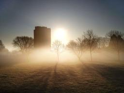 Crystal Palace park, frosty morning