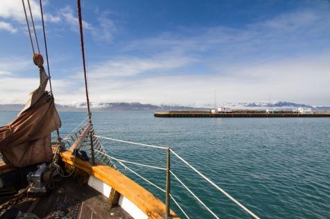 Leaving Húsavík harbour, aboard a whale watching tour.